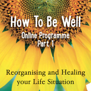 how To be well online programme